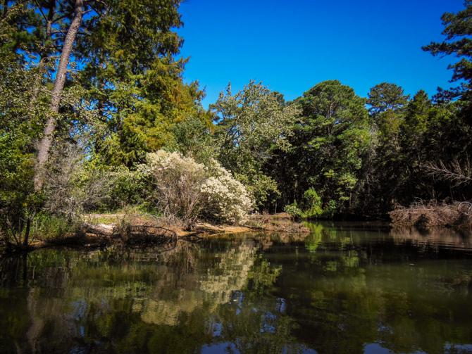 Fly Creek, Fairhope Alabama